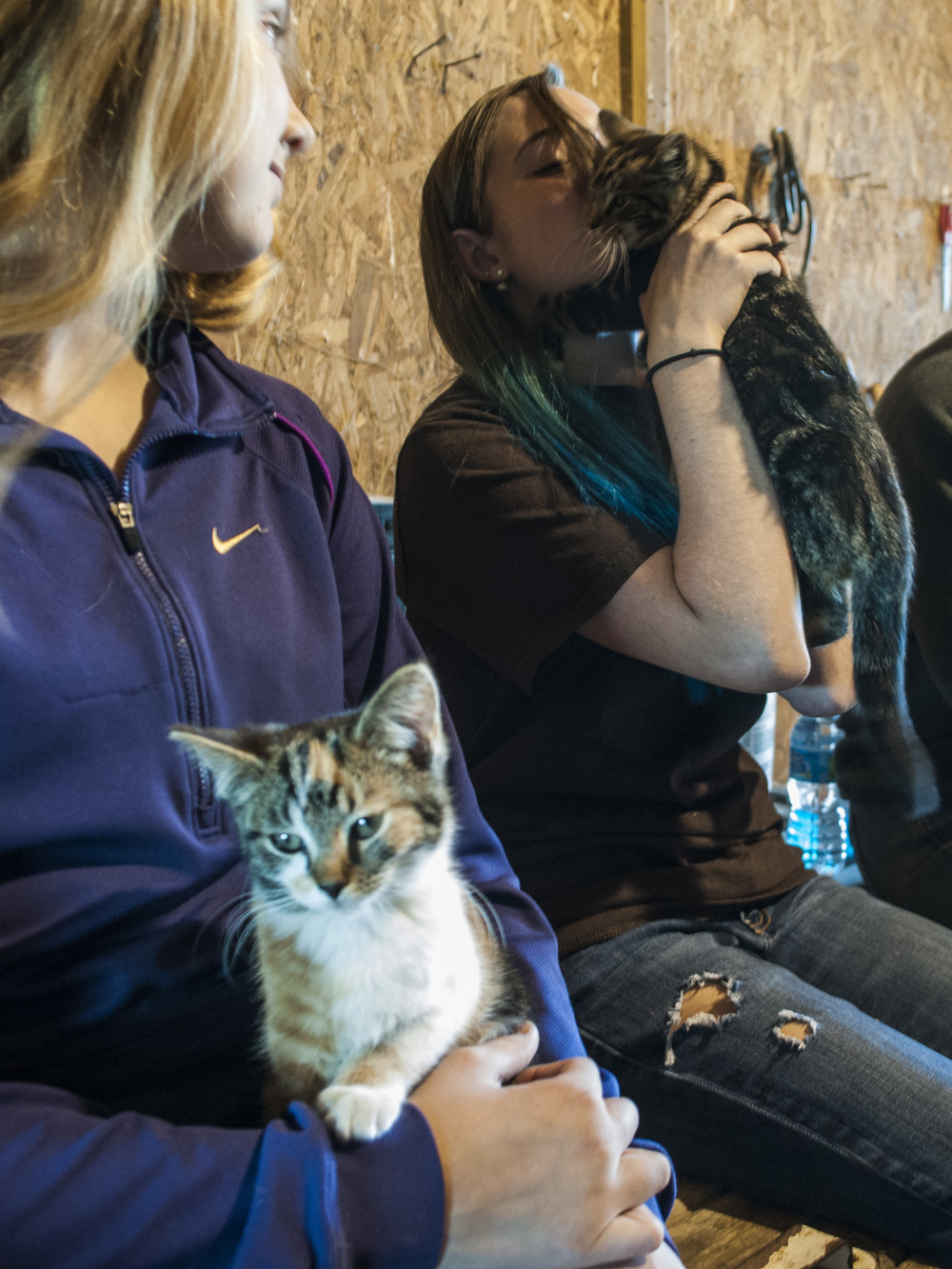 Peyton Tiedtke, left, and Kailey Dean, right, play with the two of the four kittens that live in the barn. Dean tried to calm her kitten that was swatting and playing with the girls' long hair (Sept. 23, 2014).