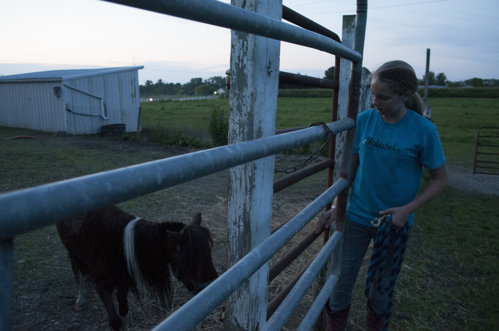 Peyton Tiedtke locks the gate to the barn after taking her mother's pony outside to dry off. The pony immediately decided to roll around in the dirt after getting its bath (Sept. 5, 2014).