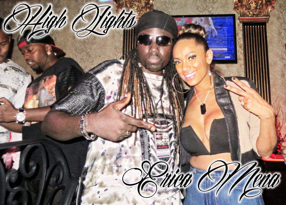 Erica Mena High Lights.jpg