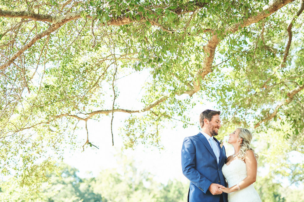 bride and groom under big tree.jpg