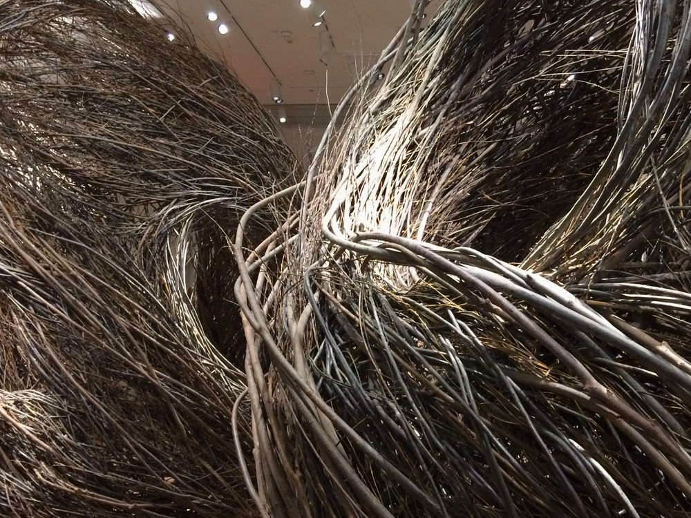 Patrick Dougherty, Shindig