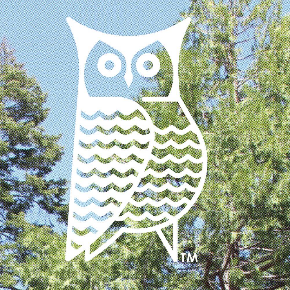 stamp ™ OWL GREEN.jpg