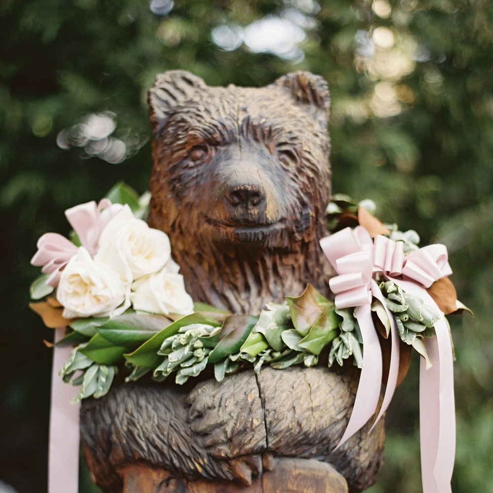bear 009351-R1-004.jpg