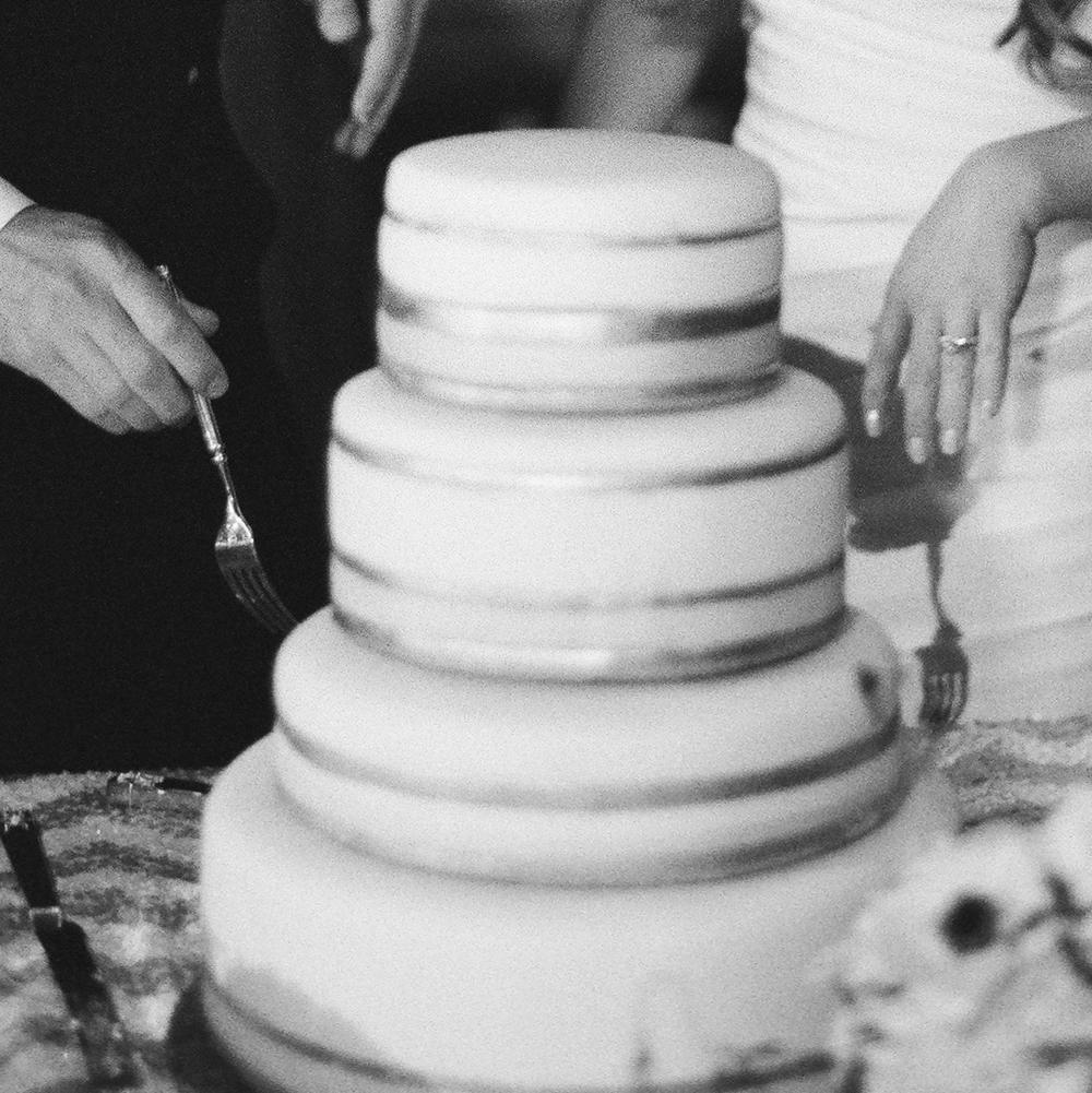 cake 31090004.JPG