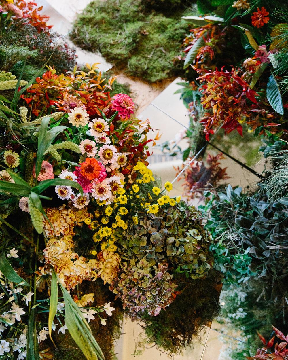 Flos-Flowering-Now-Samee-Lapham_101.jpg