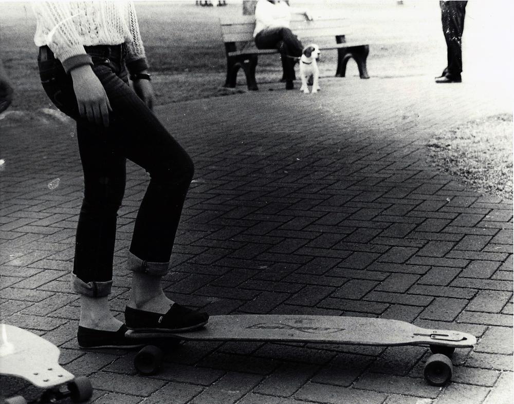 2012P Longboard.jpg
