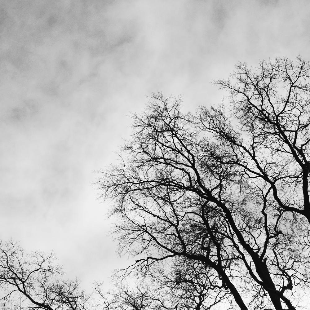 auckland_fine_art_photography1.jpg