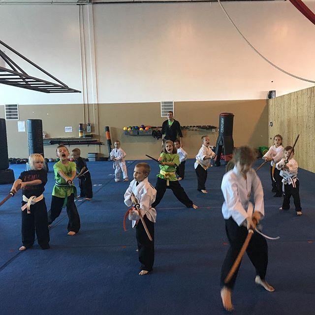 Samurai Warriors doing sword forms. #happymonday #fbk #fightingbrotherskarate