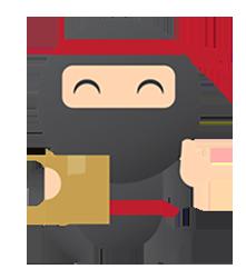 ninja gaiden pc