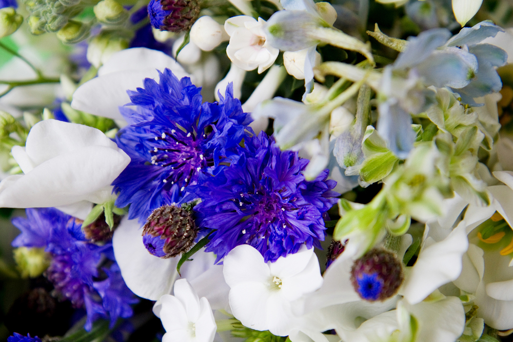Blue & White Wedding Flowers, Helen England Photography, Kent, U.K