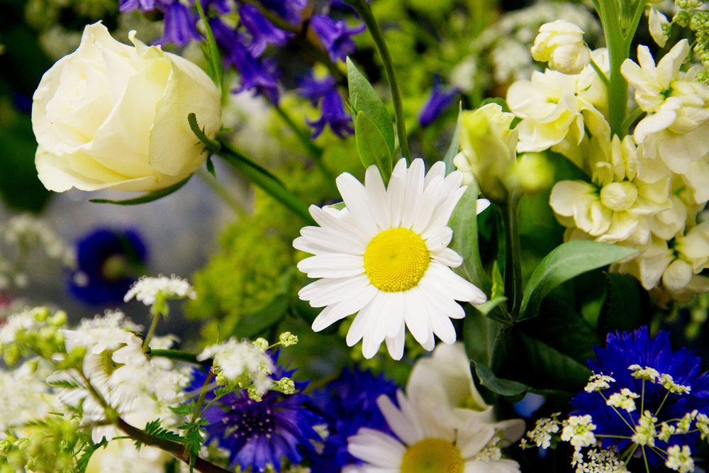 Rose & Daisy Wedding Flowers, Helen England Photography, Kent, U.K