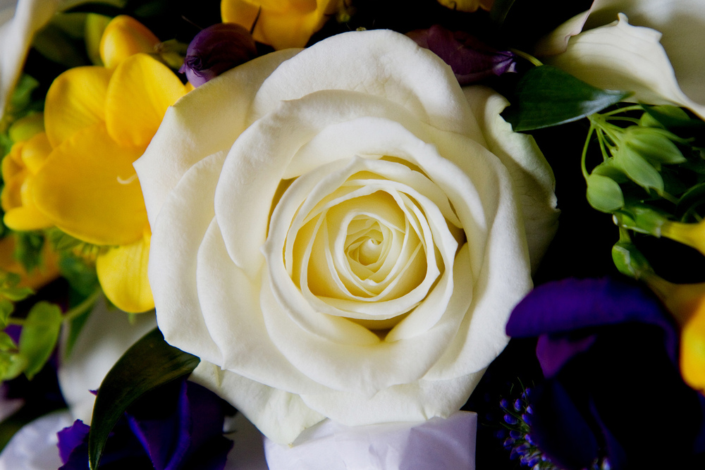 White Rose Bouquet, Helen England Photography, Kent, U.K