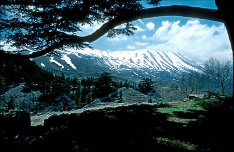 lebanon-1.jpg