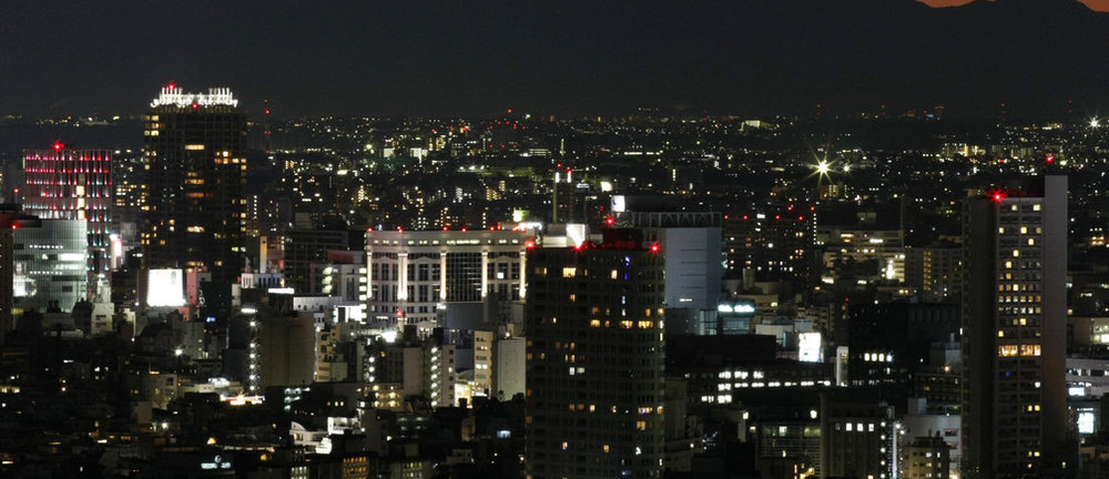 A view of Tokyo, one of Asia's best-prepared cities.  Image: REUTERS/Toru Hanai