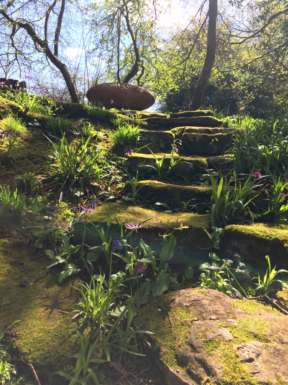 'Ellipsoid' Alison Crowther on steps with Spring Flowers.jpg
