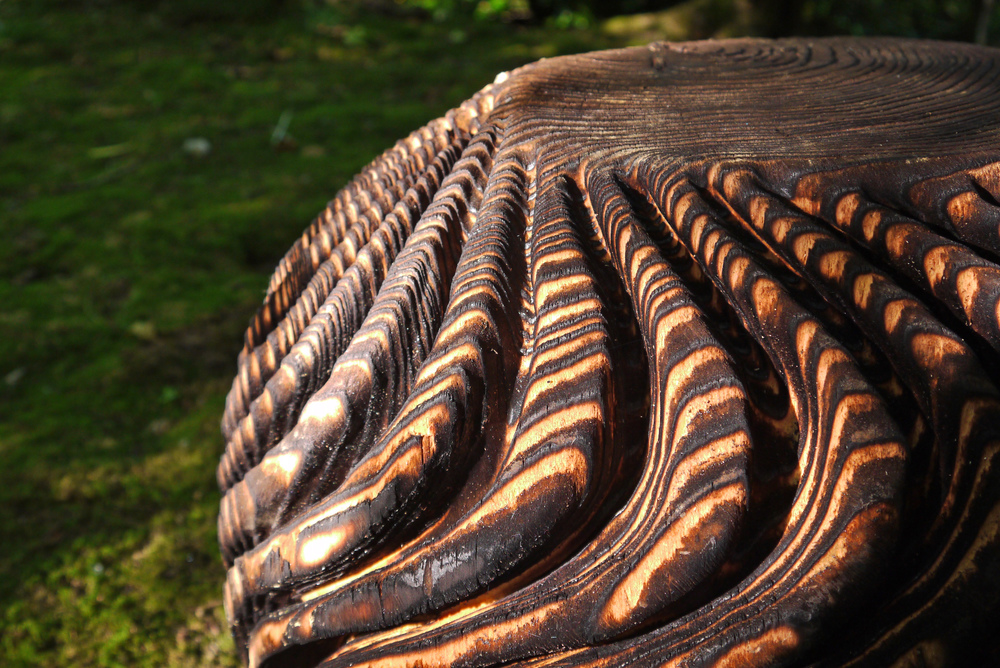 Detail of 'Patterns of Origin' - Walter Bailey, carved & scorched larch.jpg