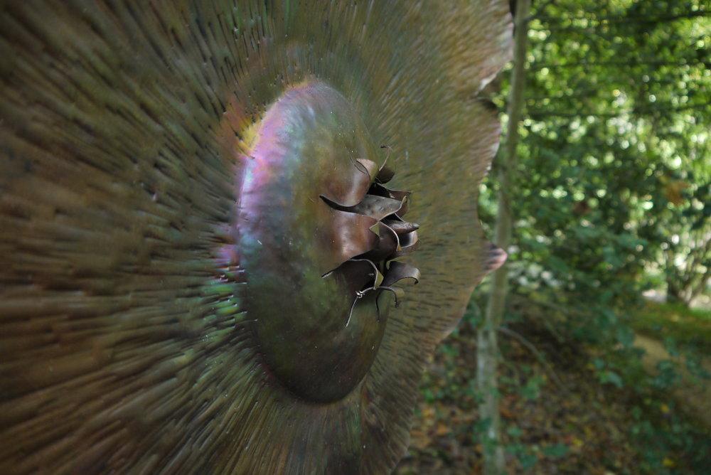 'Seed Wing II' Peter Clarke