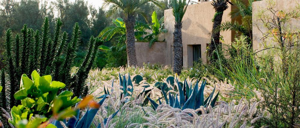 Jardin de Dar Igdad, Taroudant, Maroc   /Dar Igdad garden, Taroudant, Morocco