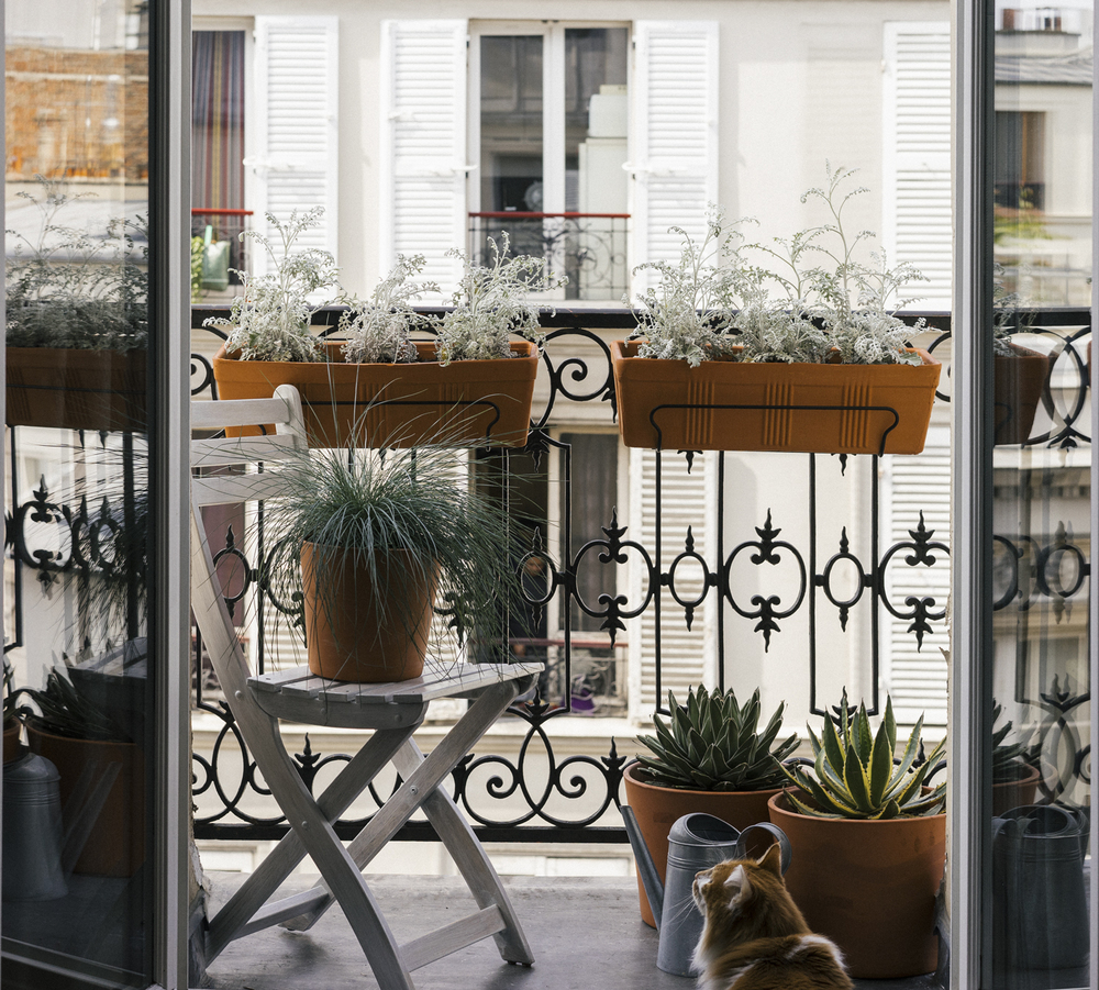 Le nouveau coin balcon et son jardin maritime / The new balcony twisted in a Maritime garden.
