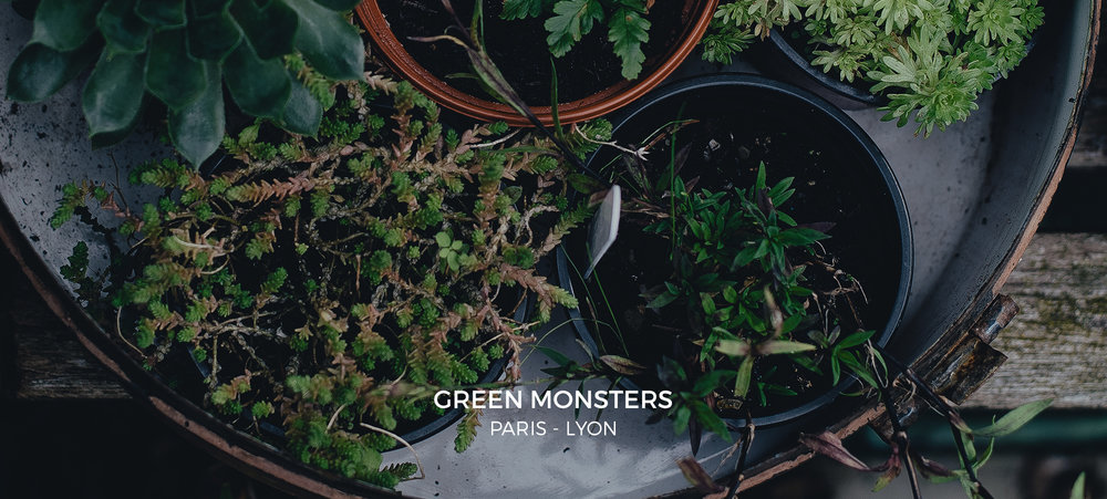 Green-monsters-contact.jpg