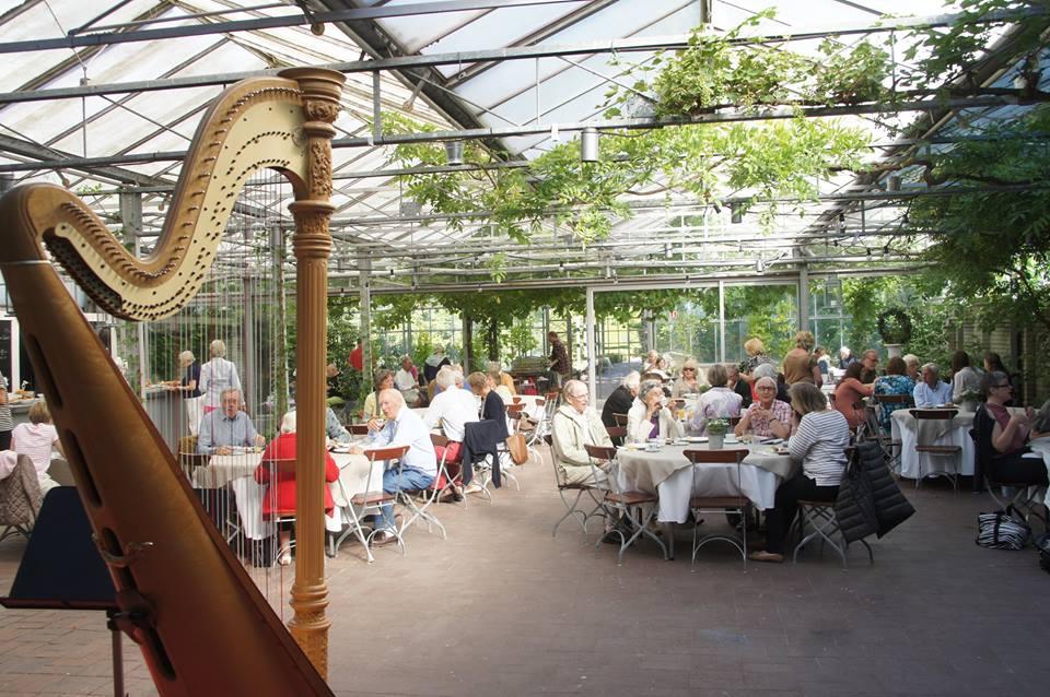 Frukostkonsert i Norrvikens trädgårdar