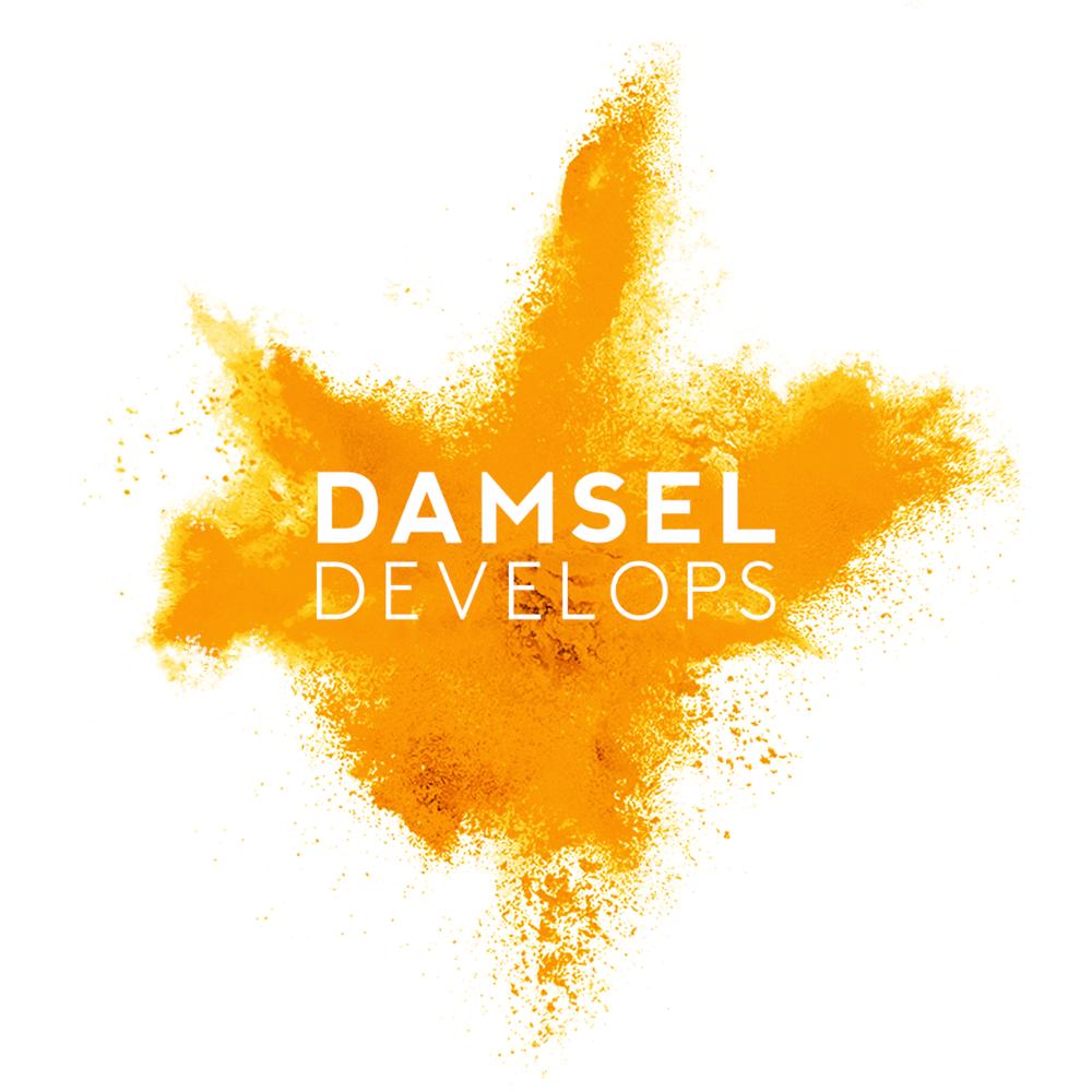 damsel-develps-logo-orange.png