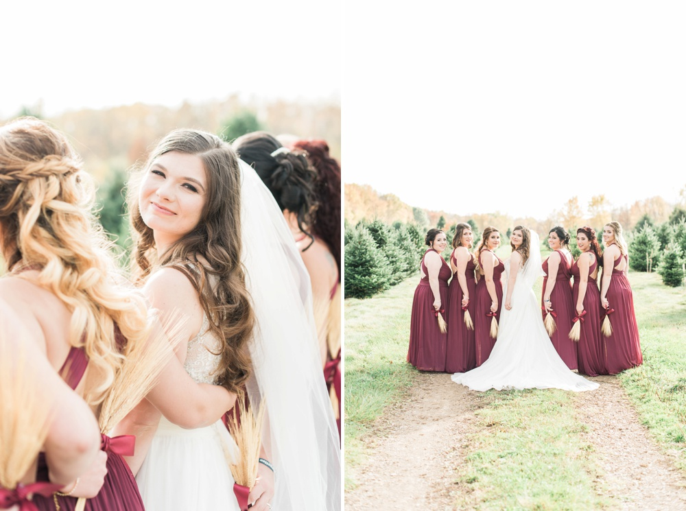 ricciardis-tree-farm-wedding-wadsworth-ohio-lauren-ryan_0062.jpg