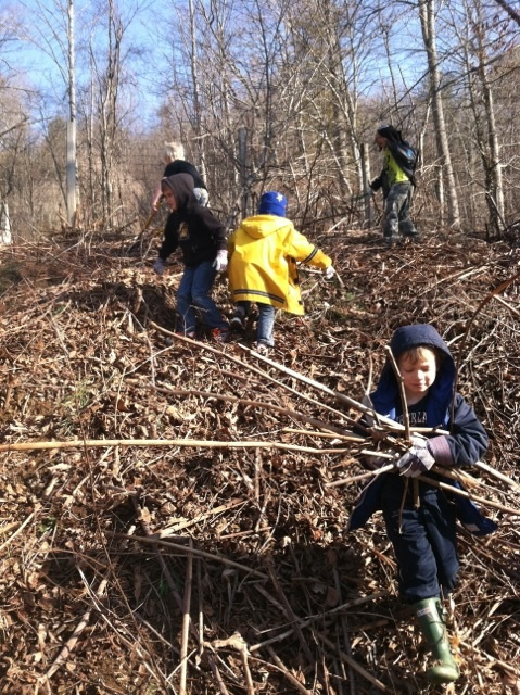 Spruce Pine Montessori student Theo Henry carries brush as fellow students clear more to create a playscape on the hillside behind the school. (Photographer Tim Evans)