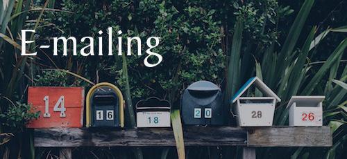 320 €* - Intégration d'un formulaire d'abonnementImportation de vos contacts dans l'applicationCréation de 2 modèles d'e-mailsEnvoi de 2 campagnesFormation 1 x 90 minutesGestion de vos réseaux sociaux (tarif sur demande)