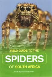 Spiders SA.jpg