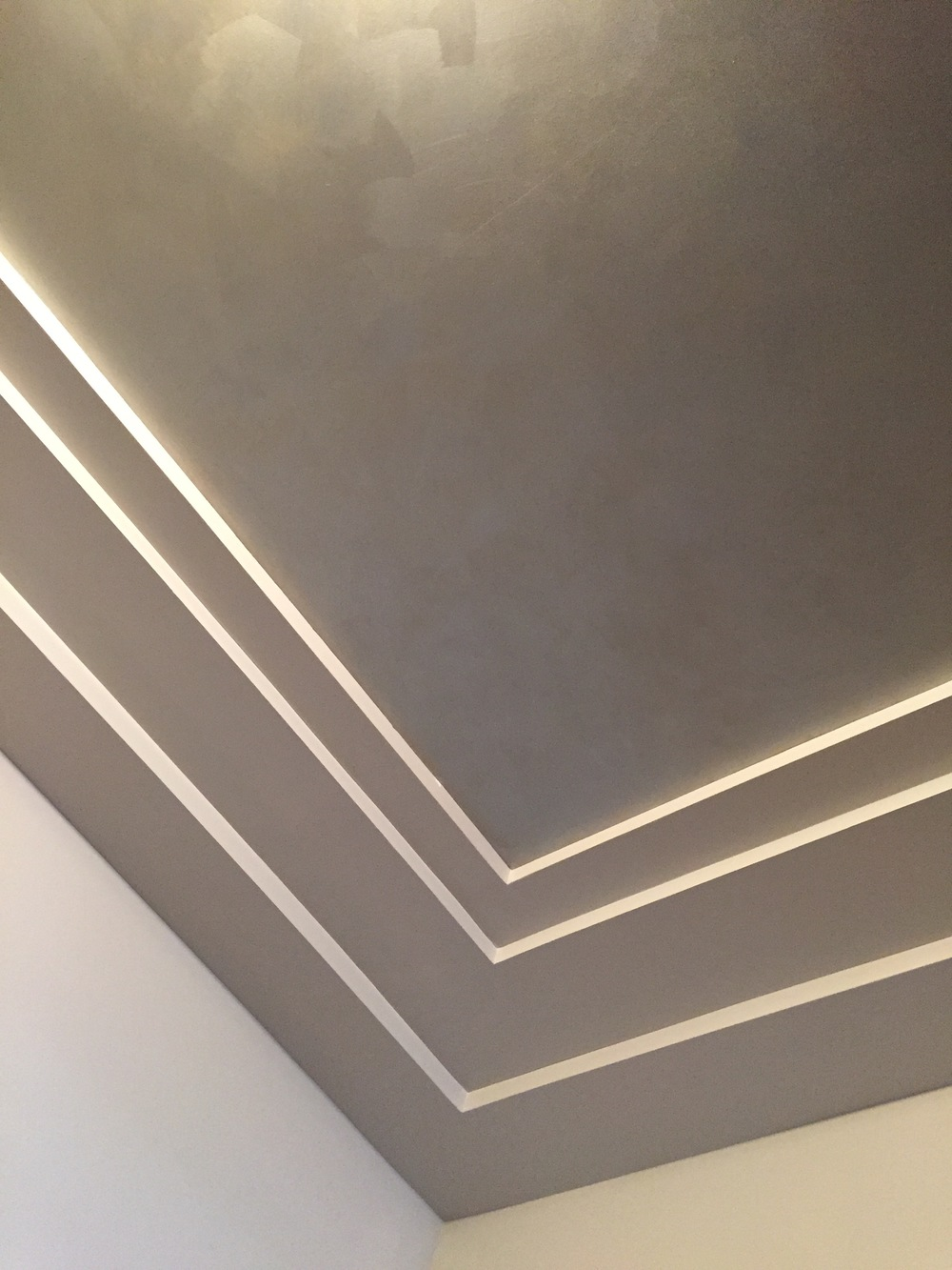 Brushed Metallic Ceiling