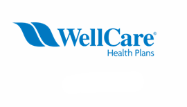 Wellcare Thumbnail.png