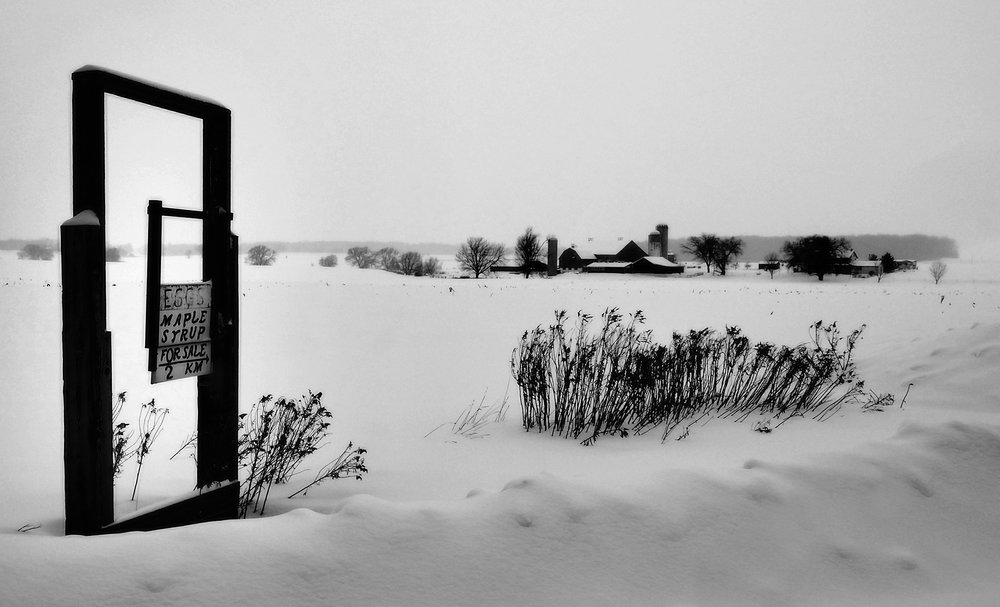 Waterloo Region Black and White Photography by Susan Arness