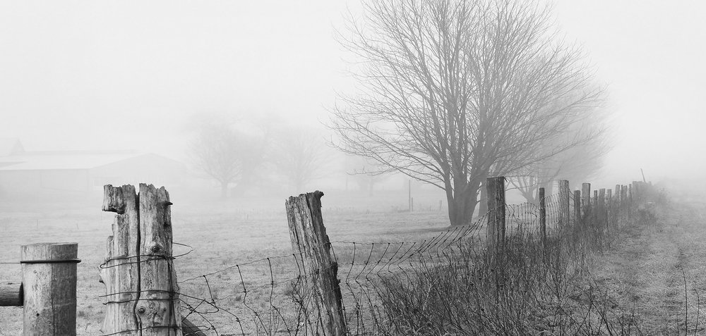 Waterloo Region Landscape -Fog