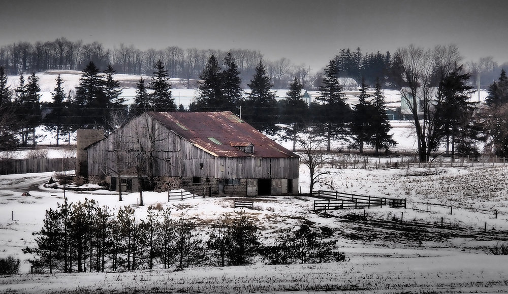 Winter Farm Waterloo Region