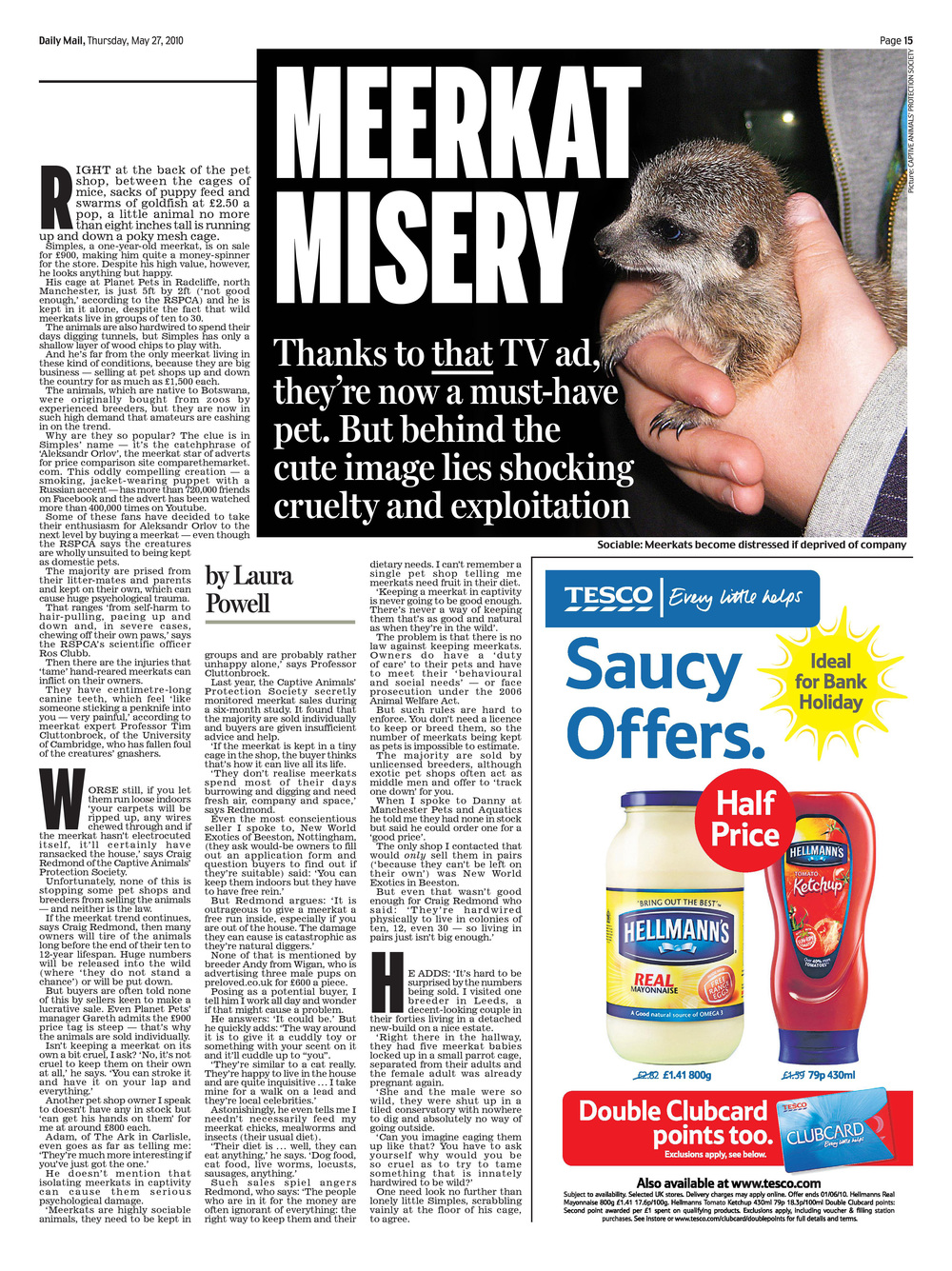 Meerkat misery  Exploitation of meerkats   Daily Mail