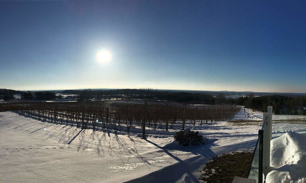Winter View from Rove Estate