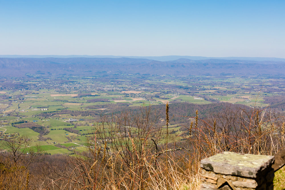 shenandoah national park wedding (37).jpg