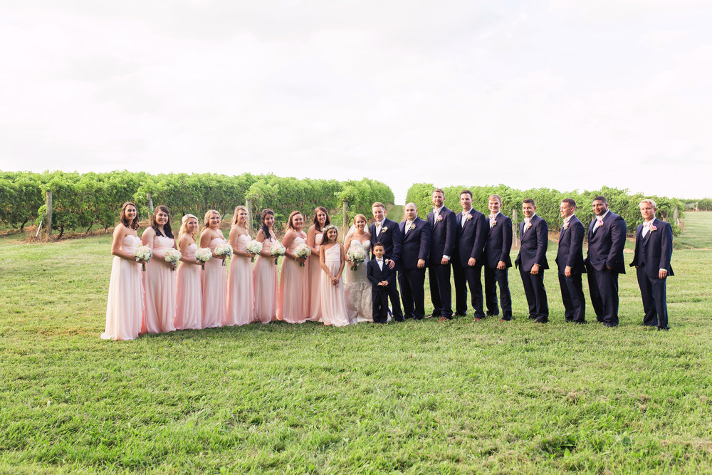 wedding party2.jpg