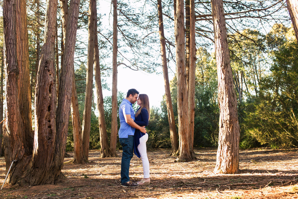 arboretum Engagement Session blog-1.jpg