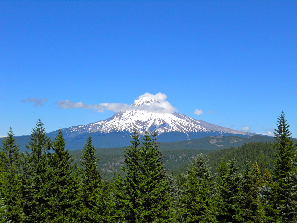 Field trips to Mt. Hood, Oregon, and other locales