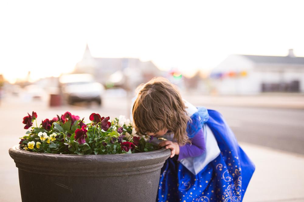Quakertown Child Photographer