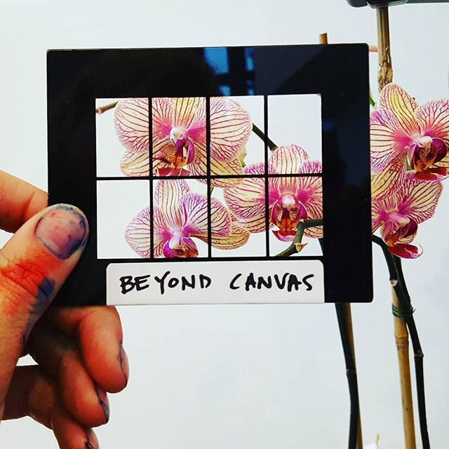 #orchid #viewfinder #view #pleinair #painting #art #pink #greenthumb #beyondcanvas