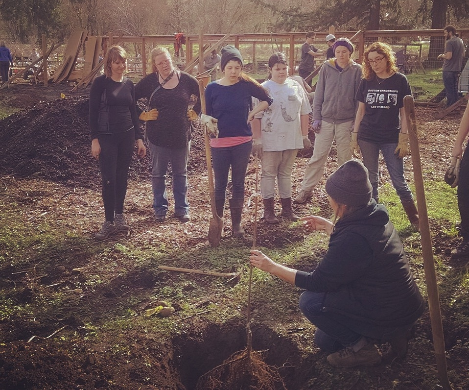 Volunteers were led in fruit tree planting as well as native plantings for local pollinators.