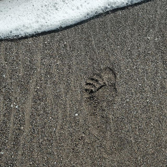 The only footprint we leave behind #travelresponsibly