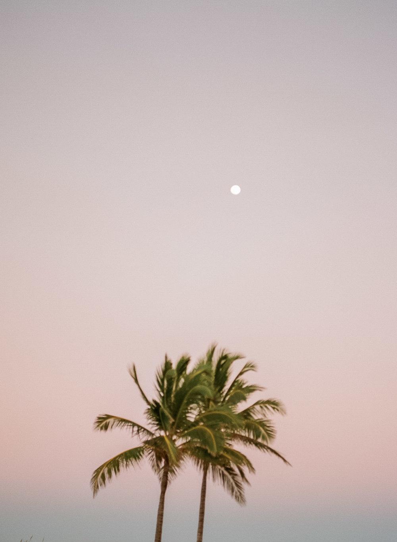 bahamas_film-44.jpg