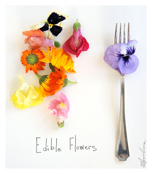 edible flowers photo by monica loos