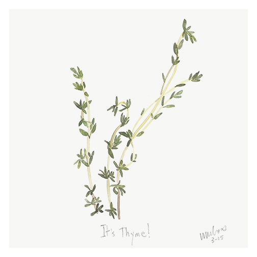 thyme by monica loos