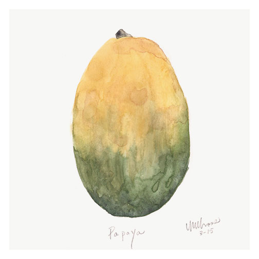 papaya by monica loos