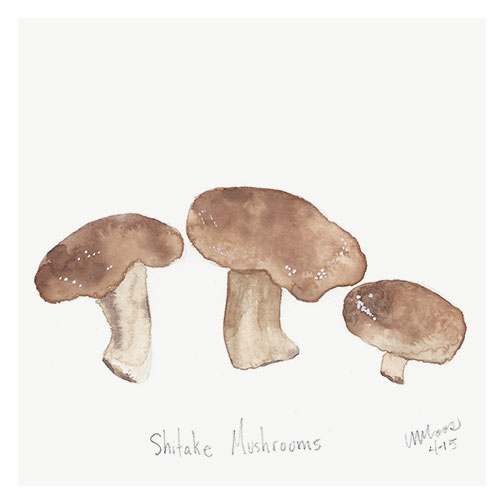 shitake mushrooms by monica loos